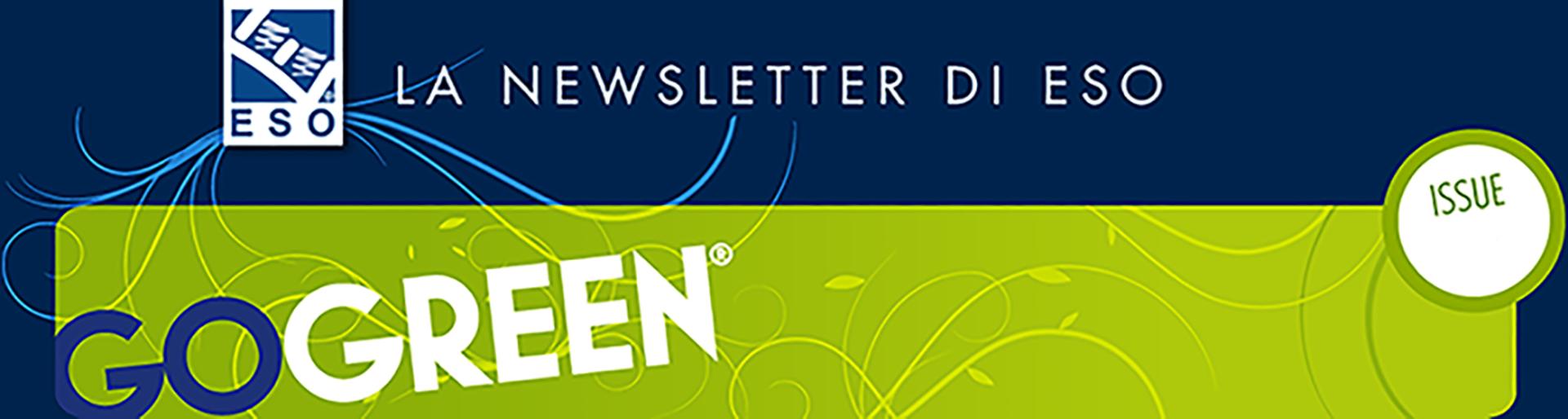 subscription newsletter